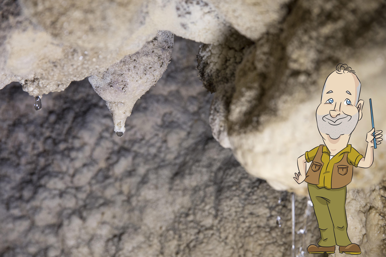 Le concrezioni delle Grotte di Rescia
